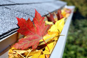 Gutter Cleaning Kettering Ohio, handyman Kettering Ohio