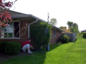 Shrub and Bush Removal in Kettering Ohio