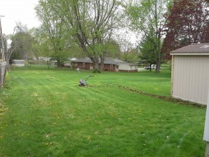 new garden installation ohio before