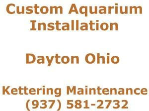 custom aquarium installation dayton ohio